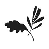This is the restaurant logo for Olive + Oak
