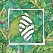 This is the restaurant logo for Vinaigrette Salad Kitchen