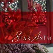 This is the restaurant logo for Star Anise Thai Cuisine