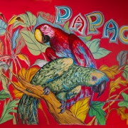 This is the restaurant logo for Papagayo Mexican Kitchen & Tequila Bar